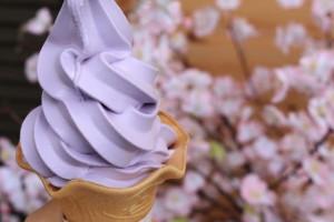 Lavender ice cream in Kawaguchiko herbkan☆